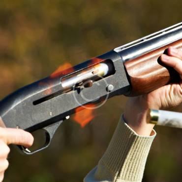 Great New Handguns for 2016